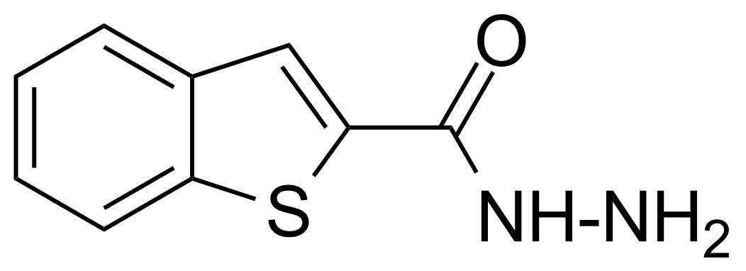 Structure of Benzo[b]thiophene-2-carboxylic hydrazide
