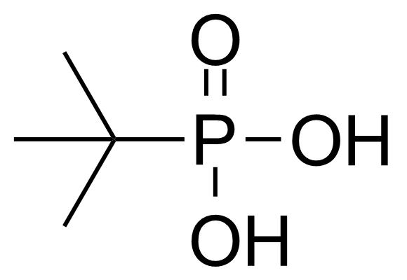 Structure of tert-Butylphosphonic acid