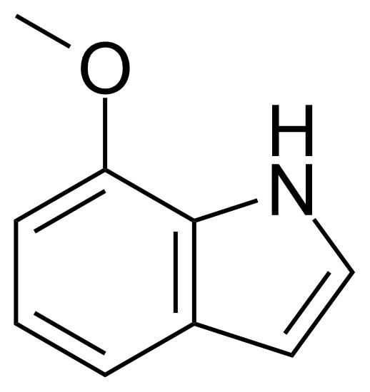 Structure of 7-Methoxyindole