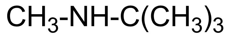 Structure of N-Methyl-tert-butylamine