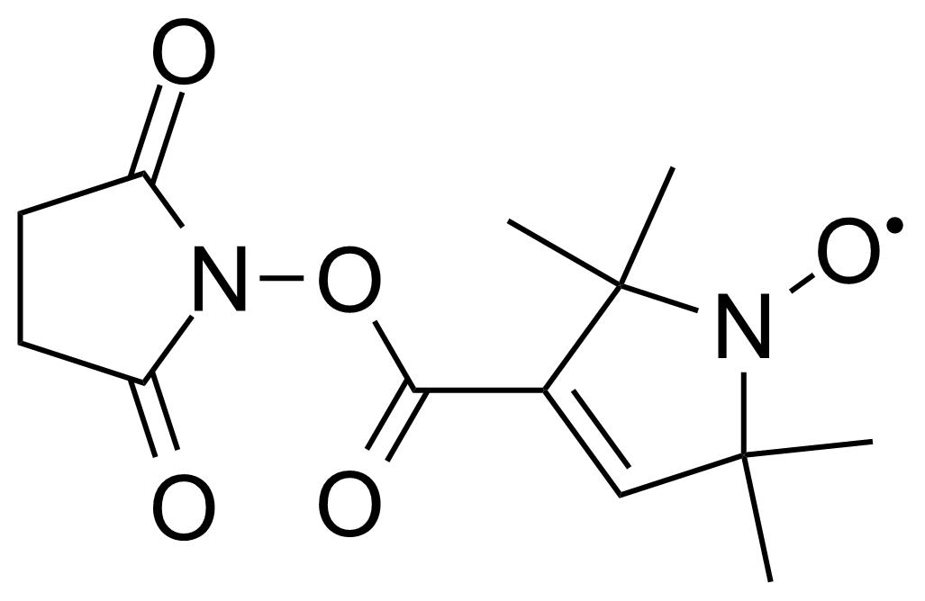 Structure of 2,2,5,5-Tetramethyl-3-pyrroline-1-oxyl-3-carboxylic acid N-hydroxysuccinimide ester