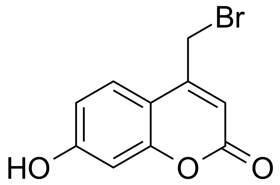 Structure of 7-Hydroxy-4-(bromomethyl)coumarin