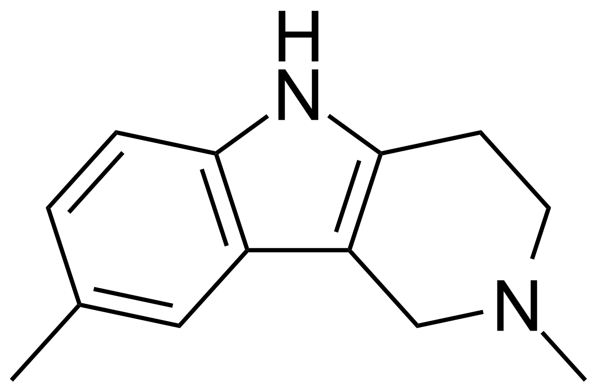 Structure of 2,8-Dimethyl-2,3,4,5-tetrahydro-1H-pyrido[4,3-b]indole