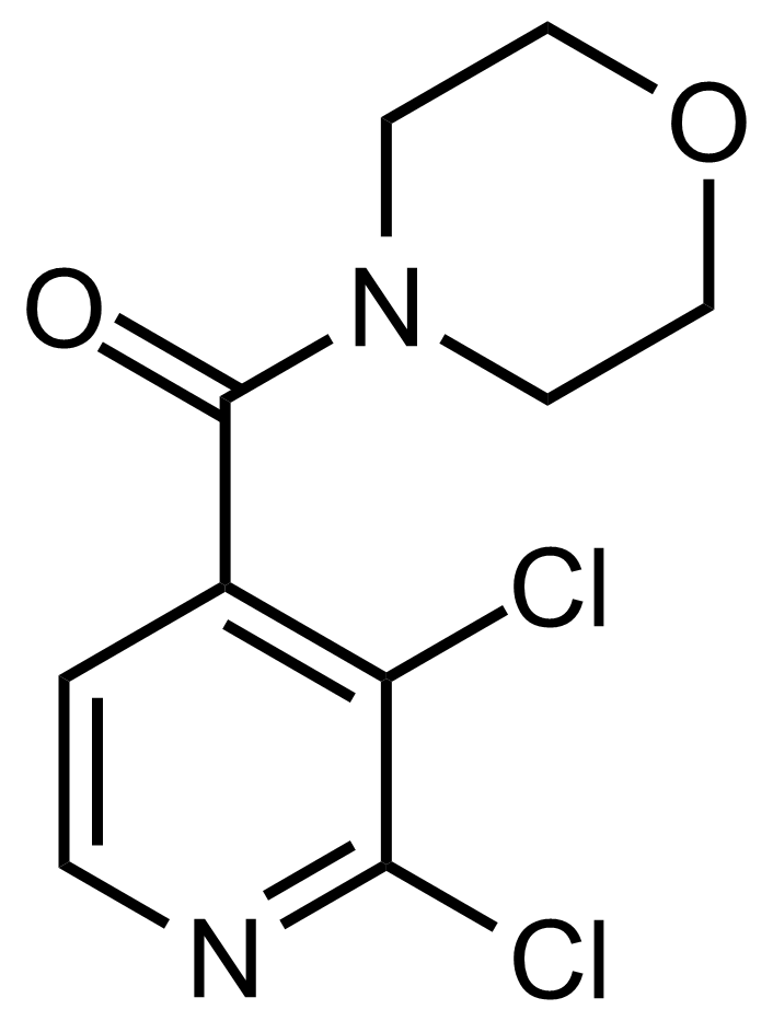 Structure of (2,3-Dichloropyridin-4-yl)(morpholino)methanone
