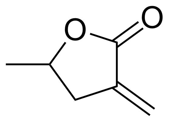 Structure of alpha-Methylene-gamma-valerolactone